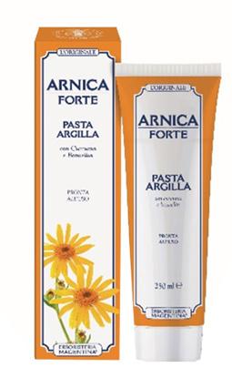 Immagine di ARNICA FORTE PASTA ARGILLA 250 ML