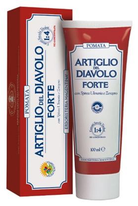 Immagine di ARTIGLIO FORTE POMATA 100 ML