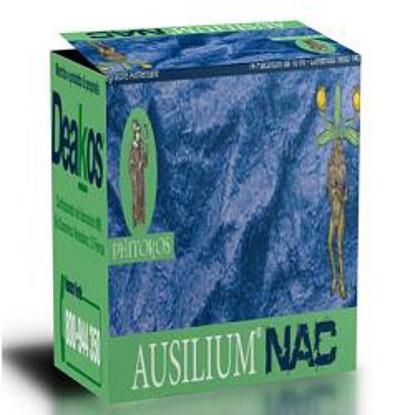 Immagine di AUSILIUM NAC 14 FLACONCINI 10 ML