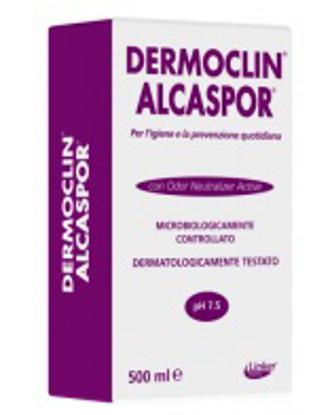 Immagine di DERMOCLIN ALCASPOR 500 ML